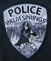 36.  ville de palm springs ( californie)