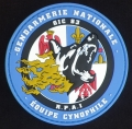 210.  gendarmerie nationale (service r p a i)
